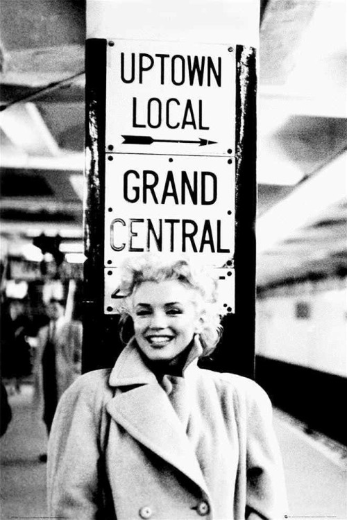 Marilyn Monroe photographed by Ed Feingersh, 1955.