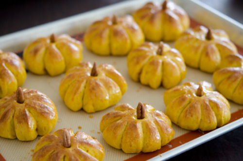 foodopia:  pumpkin dinner rolls: recipe here