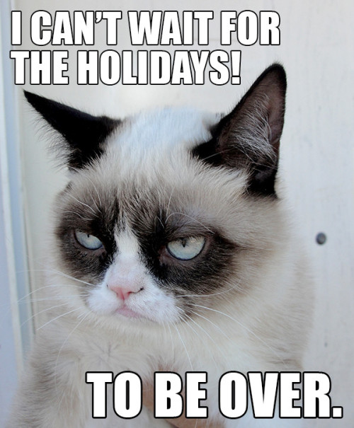 k10mioli:  thedailymeme:  It's everyone's favorite time of year  Oh kitty, don't be so sad! You can lay underneath the christmas tree and play with the ornaments.  This cat is Berezo if Berezo was a cat.