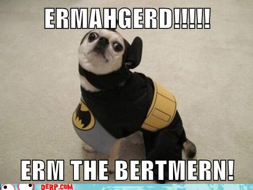 It's ermahgerd time…