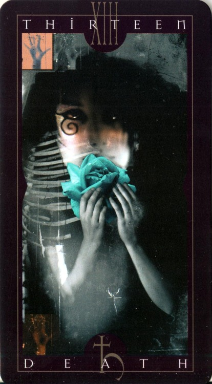 eshcaine:  Death - Vertigo tarot deckdesigned by Dave McKean  I have this deck. It's exquisite.  My first tarot deck!  I love it so much.