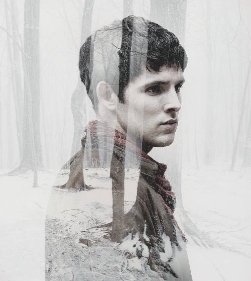 merlin in double exposure - (inspired by x)