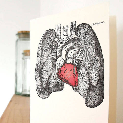 moshita:  anatomical heart love card notonthehighstreet