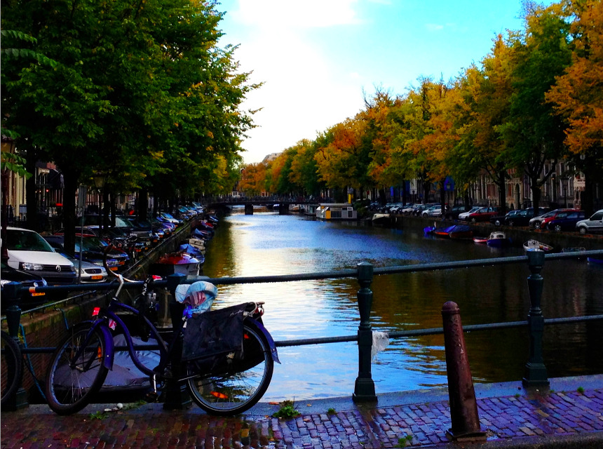 Want to go to Amsterdam for £5? Westminster News Online journalist Violeta Malheiro tells you how she did it! Full article here.
