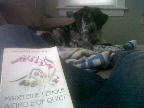 My dog, Madeleine L'Engle, and a beautiful fall day? Why, yes, yes I am skipping class.