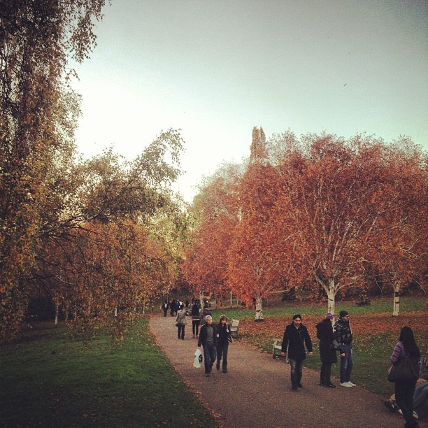 #fall #autumn #hydepark #london