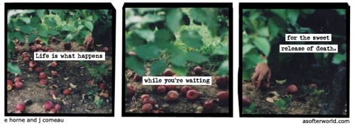 A Softer World: 894 (On the toilet.) buy this print