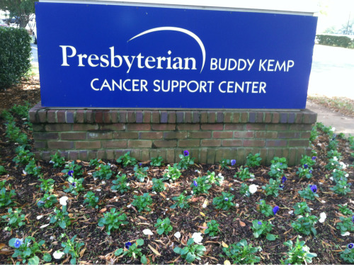 PINK WEEK-Charlotte 2012 Beneficiary: Buddy Kemp Cancer Support Center