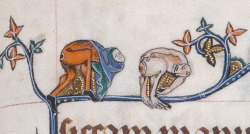 monkey goatse 2 Gorleston Psalter, England 14th century. BL, Add 49622, fol. 124r