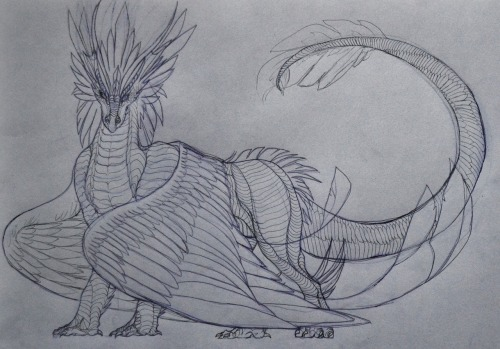 A pretty rough sketch of a dragon for a friend of mine. I've still to ink it and paint it up, but for now, this is it.