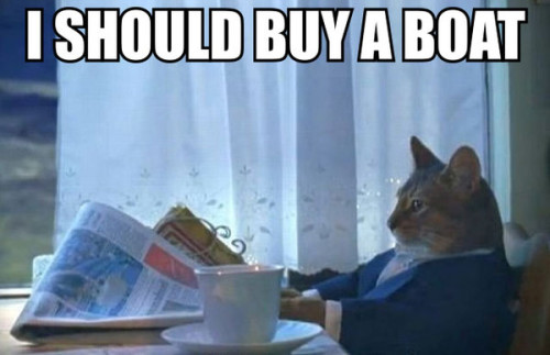 The 11 Funniest Examples of the Sophisticated Cat Meme He's thinking of buying a new lease on life.