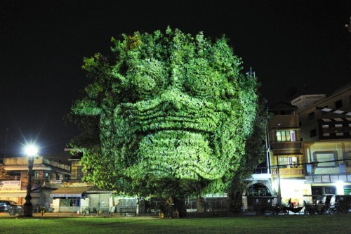 "Cambodian Tree Projections by Clément Briend ""Cambodian culture is deeply rooted in a spirituality - marked by a belief in genii and fantasy creatures. In a dark cityscape, night reveals the presence of divine creatures on trees and subsequently makes them alive and real. Such nocturnal visions allow us to grasp the way magic profoundly influences how Cambodian people perceive the world.""  Artists: 