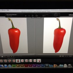 Shoot in' peppers. No biggie