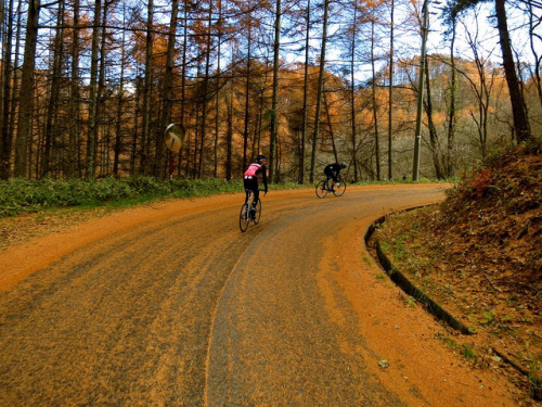 pureclimber:  untitled by yatsugatake bicycle studio on Flickr.
