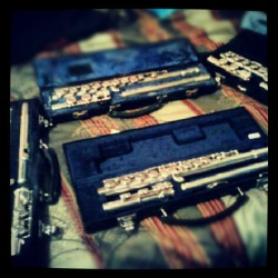 I never noticed how many flutes I had. o.o #flute #band #bandgeek #teenager #love #iloveyou #coolkid #mylife