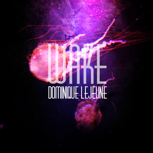 Dominique LeJeune - WAKE EP 7.1                   Dominique LeJeune is sweet stuff. WAKE EP is full of tender little moments. Her voice carries it. At its most chaotic and distorted her voice remains the center of calm of the album. Indeed it is memorable enough to count as a soul for the album. For a few songs the sound and voice melt into one single sound, hard to distinguish which came first. Dream pop is a good term for what is going on in these seven breezy tracks. Things are blurred. Rarely do they get confrontational. The songs float on by leaving a pleasant impression.                   The album starts off gently with a bunch of small children chanting 'jellyfish' near the water. It may seem insane to start it out with such a silly beginning. However this sets the tone for most of the album. Dominique LeJeune remains committed to channeling a sort of child-like wonder with the world. 'In Reveries' the first 'proper' track shows this off nicely. And yes she does mention jellyfish in the track showing the children's chants weren't for nothing. 'Penny Please' is a delicate song. Here Dominique strips away the distorted guitar replacing them with crystal clear acoustic guitars. By far the winner of the bunch is the eclectic 'Shoulder'. On this song Dominique veers from quiet to loud, slow to fast, and the buildup is glorious. Actually it remains one of the few songs on the entire album to offer a real sense of gigantic proportions.                   Overall this is the perfect little EP to listen to as one drifts off to bed.