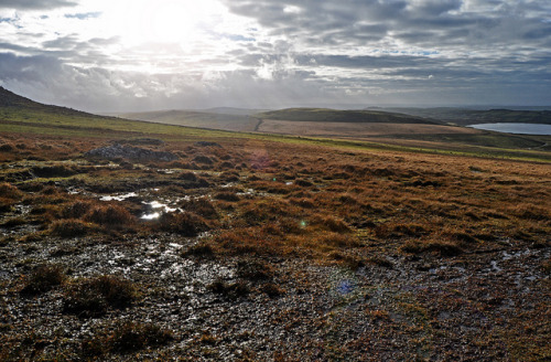 Day 677 - Bodmin Moor on Flickr.5/11/12 - I have driven through Bodmin moor on the A30 many many times and I have looked at the amazing landscape as I zoomed past but I have never actually ventured onto the moor, It feels a mysterious place, if the hills could talk I imagine they would have some tales to tell. www.highestpoints.co.uk