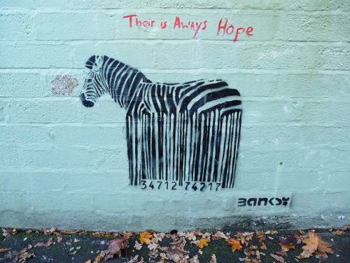 Barcode Zebra by dawn.v on Flickr.