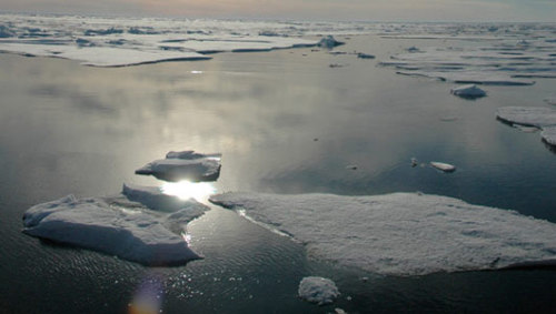 5 ways rapid warming is changing the ArcticChanges in the Arctic waters, particularly the thinning and receding sea ice, will likely both hurt and benefit year-round and seasonal Arctic animals.