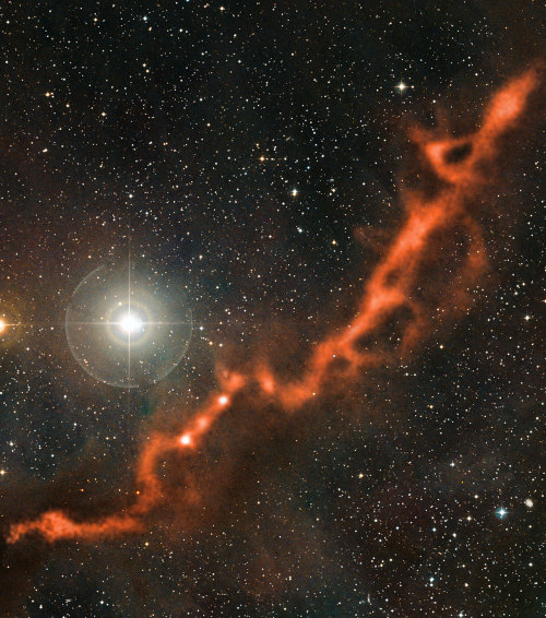 APEX image of a star-forming filament in Taurus Credit: ESO/APEX (MPIfR/ESO/OSO)/A. Hacar et al./Digitized Sky Survey 2