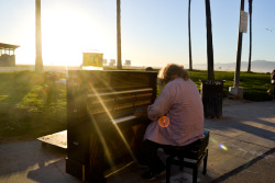 The venice beach piano man