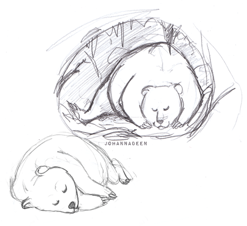 Some bear doodles I did for fun. I have this idea of an illustration about a hibernating bear sleeping all cozy-like in a  den.