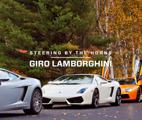 Steering by the Horns: Giro Lamborghini. A sublime encounter with the bull.