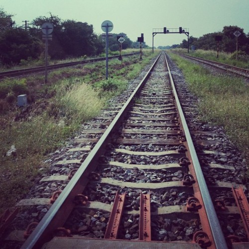 #railway#rail#train#stone#faraway#green#yard#field#picoftheday#nature#view#sky#meijiz