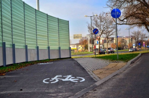 What the what…? World's shortest cycle track.