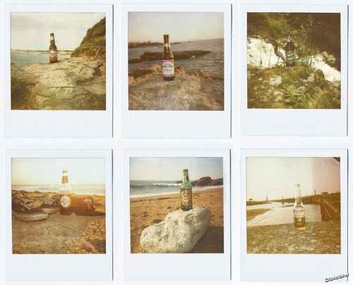 Polaroteuses on Flickr.