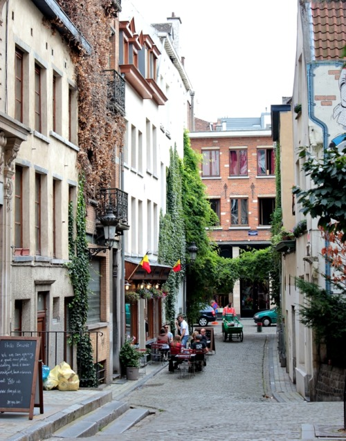 urbanhedgerow:  travelingcolors:  Brussels | Belgium     Photo taken by me (Nacho Coca)      Really amazing seeing nature weave its way through the city!  These little tendrils of green provide amazing habitat opportunities!