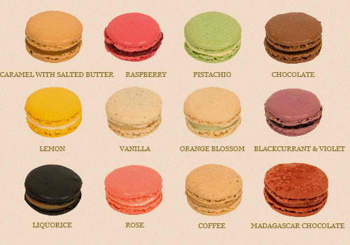 Nobody in my family believes I can nor wants me to make macarons for Thanksgiving but I'LL SHOW THEM ALL.