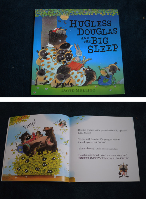 Hugless Douglas and the Big Sleep – David Melling When this new book popped into my hands I knew it was going to be great. Douglas is a great character that is loved by my whole family. Douglas has been invited to a sleepover with his rabbit friend. But Douglas has never been to a sleepover and with everything else that happens to him there are always hurdles and problems to squeeze into and overcome. We've not actually read this book at home yet, it's been put in a pile for Max's birthday but I needed to share it with you all as I know it's one that everyone will love as much as us.