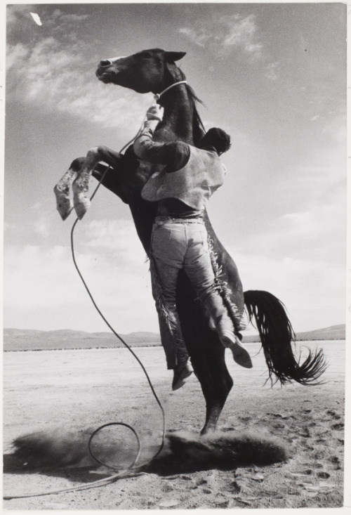 mpdrolet:  Stuntman with Mustang on the set of The Misfits, 1960 Ernst Haas