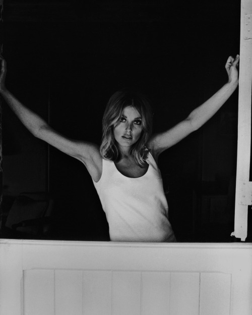 sharonandromanlove:  Sharon Tate, photographed by Curt Gunther in 1967