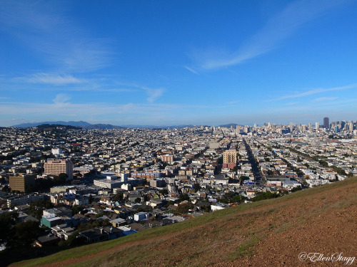 View of SF from Bernal Heights park.