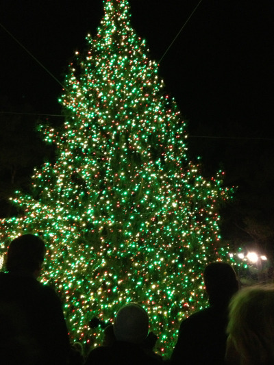 Tree lighting at L.L.Bean tonight