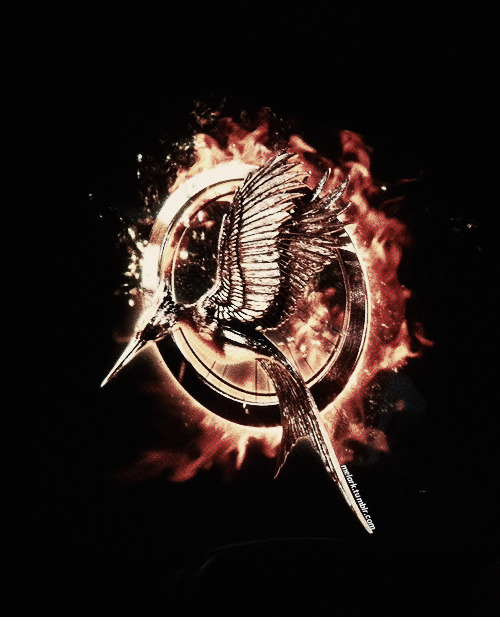 melark:  Catching Fire Logo