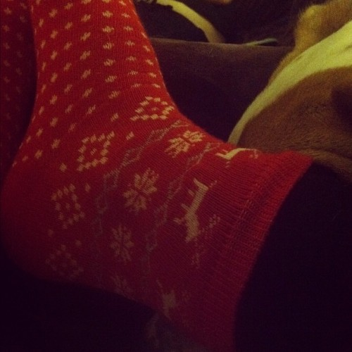 fancy christmas socks 🎅🎁