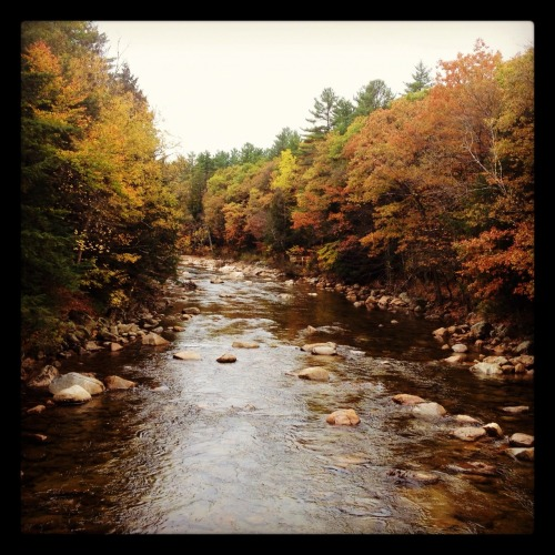 A scenic view from New Hampshire, care of Wild & Domestic:    Saco River viewed from the Bartlett Covered Bridge, Bartlett, New Hampshire   Follow her on Tumblr at sarette-s.tumblr.com.