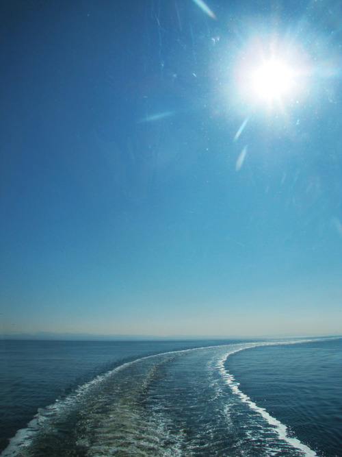 Took this photo on a boat to Vancouver Island. Can't wait for summer :')