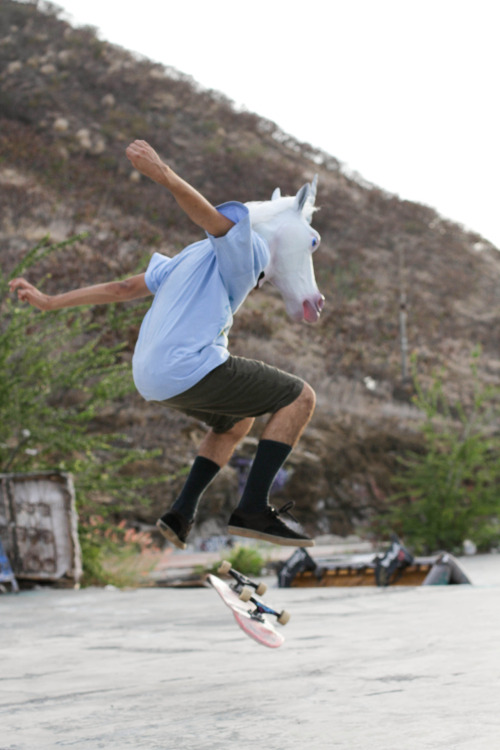 I bet you didn't know unicorns could skate