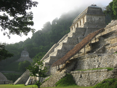 visitheworld:  The mayan pyramids of Palenque in Chiapas, Mexico (by Plant Design Online).