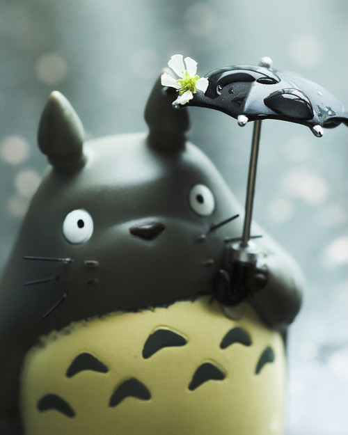 Oh Totoro! Spring time! by killncatch on Flickr.