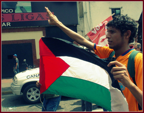 Palestina__ahonda on Flickr.2009 @FiverWeed