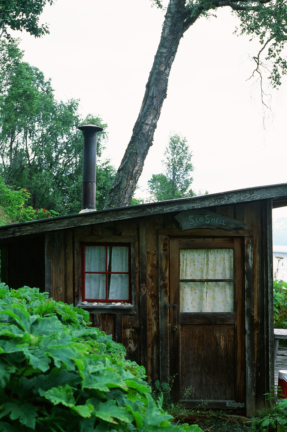 sea shell cabin. homer, ak