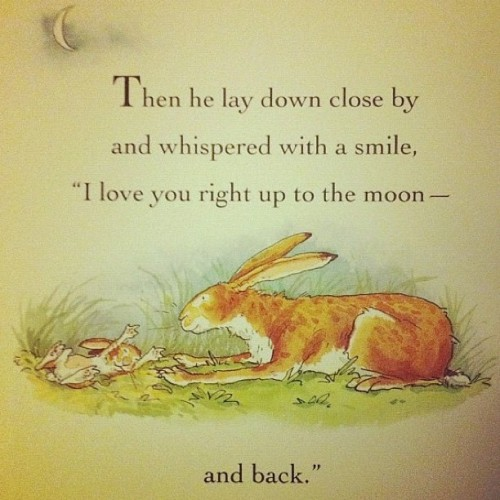 globalsoft:  Cutest think ever #hare #cute #love #moon #personal  Hare talk..