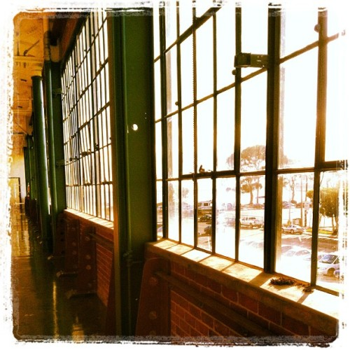 The Old Ford Factory in Richmond. #instagramaddict #iphonephotography