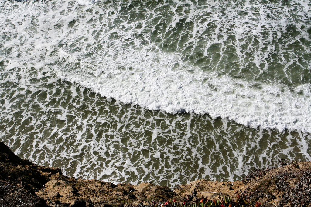 San Gregorio Beach (by *clairity*)