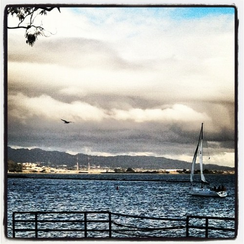 Point Richmond #iphonephotography #sailboats